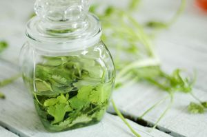 629px-Preserve-Herbs-Step-5