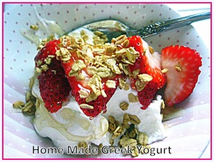 Home Made Plain Greek Yogurt - sweetheatchefs.com